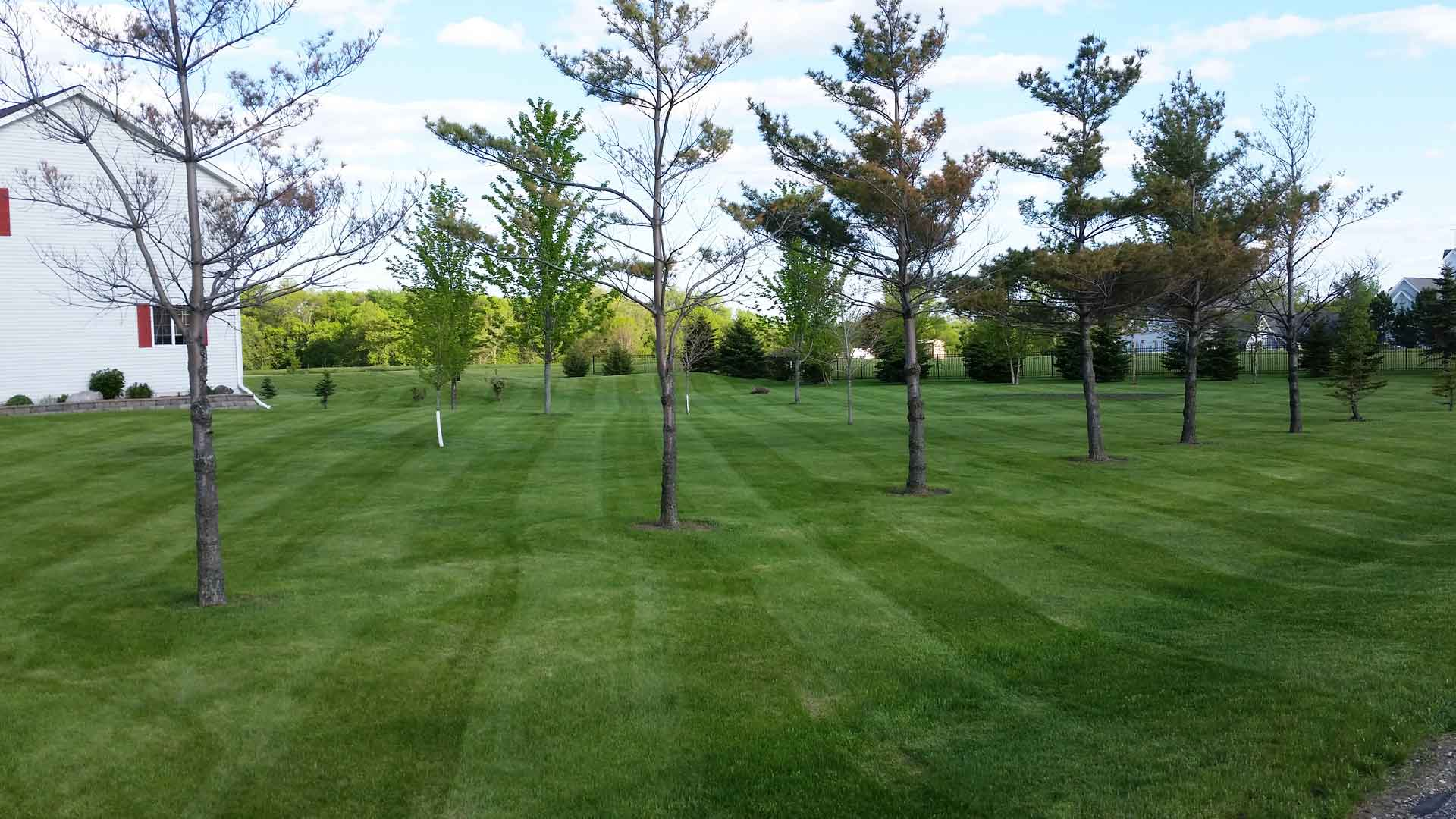 Residential property in St. Cloud with our lawn care services.