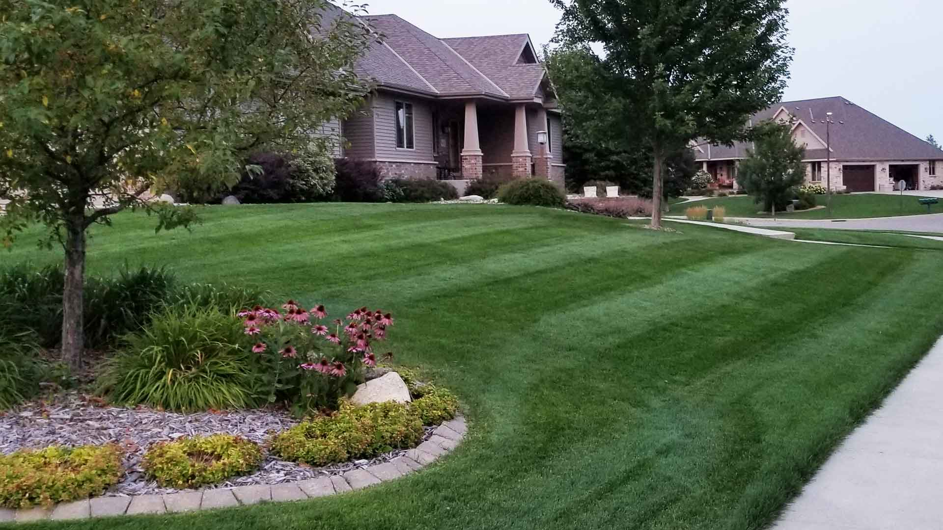 A beautiful, thick, green lawn in St. Cloud that receives on-going lawn fertilization treatments.