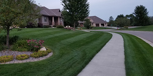 Yard in Sauk Rapids, MN that is deep green from fertilization.
