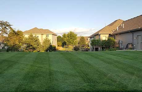 Contact Info For Sunset Mowing, (320) 293-1625