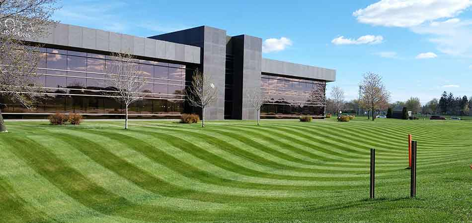A commercial lawn with mowing stripes in St. Cloud, MN.
