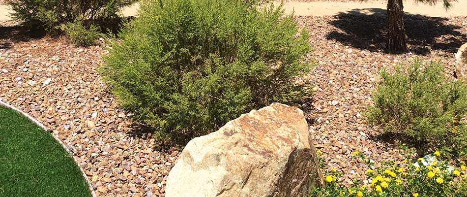Landscape bed with rock mulch in Sauk Rapids, MN.