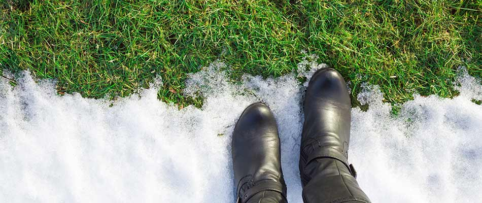 3 Landscaping Tips for the Snowy Season