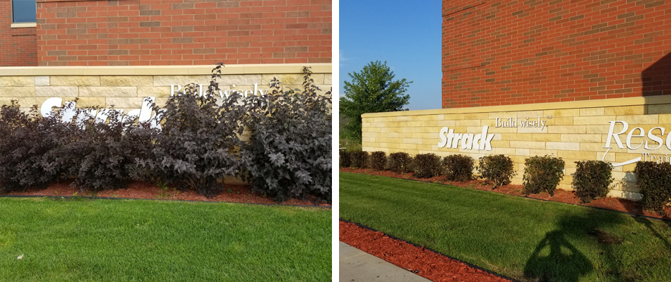 A before and after photo of bush trimming in front of a building in Sartell, MN.