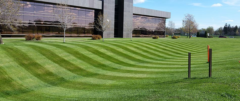 Commercial property in Sauk Rapids, MN with mowing stripes.