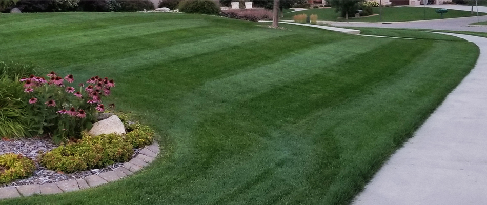 Professional lawn mowing with ongoing maintenance at a home in St. Cloud, MN.