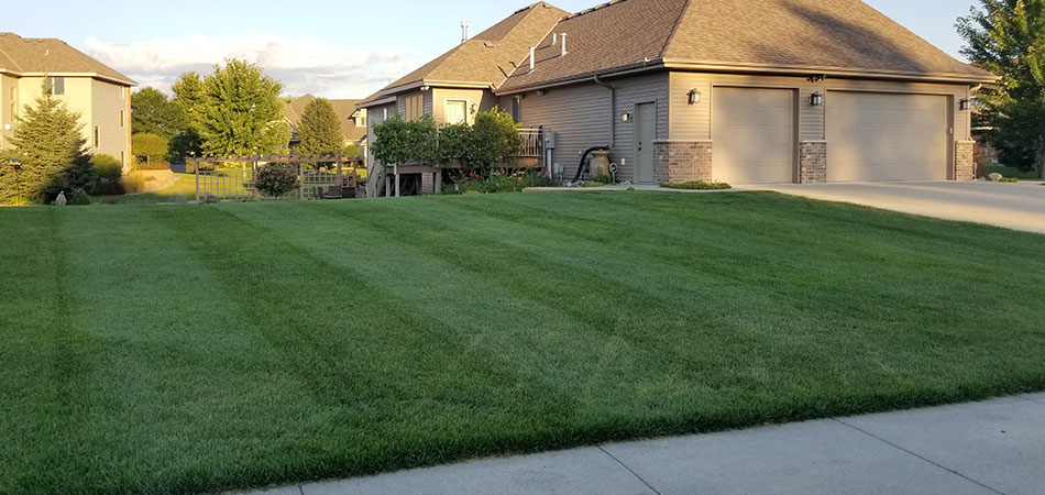 Lawn mowing and maintenance services at a home in Sauk Rapids.