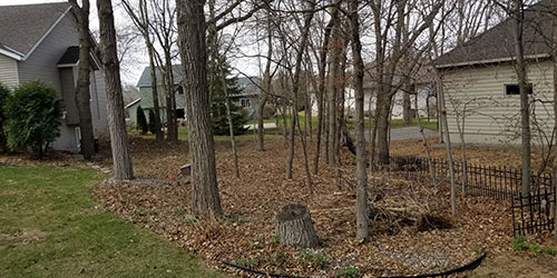 Home in Sartell, MN that needs a fall cleanup with leaf removal service.